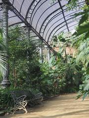 Un pequeño oasis en la ciudad: L'Umbracle. Parc de la Ciutadella (Angela_GM) Tags: modernisme beautyindecay l'atelier escueladejackie paraísourbano