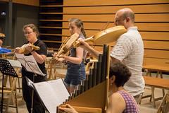 2018-07-19 MedievalMusicBesalú (15)