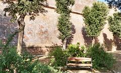 Siena, Toscana/Italy (08/2017) (Migathgi) Tags: siena italia migathgi italien toscana v500 f045