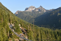 Up In The Mountains - 11 (Average Photographer 1992) Tags: landscapephotography landscapes landscape nikon nikonphotography nikonphotographer nikonuser nikonphoto nikond7200 nature naturephotography mountain mountains squamish seatoskygondola britishcolumbia britishcolumbiacanada canada tree trees august august2018 earth mountainrange mountainranges mountainscape scapes summer summer2018 vacation photography thechief skypilot