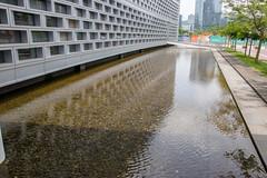 Water design around SUSTECH Library building, Shenzhen, China