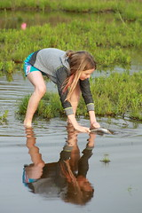 Stormwater Retention Basin - wetlands lesson