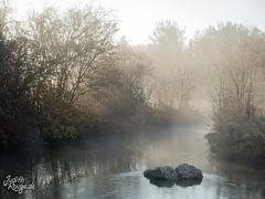 Autumn Haze II (judithrouge) Tags: autumn fall fog mist haze herbst nebel dunst wasser water bach stream idyll idylle morning morgenstimmung morgennebel