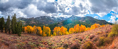 Sonora Pass Multishot Panorama! Lightroom Stitched Pano Eastern Sierras Fall Foliage California Fall Color! High Sierras Autumn Aspens Red Orange Yellow Green Leaves! Sony A7R II Carl Zeiss Sony Vario-Tessar T* FE 16-35mm f/4 ZA OSS Lens! McGucken (45SURF Hero's Odyssey Mythology Landscapes & Godde) Tags: sonora pass storm clouds eastern sierras fall foliage california color high autumn aspens red orange yellow green leaves sony a7r ii carl zeiss variotessar t fe 1635mm f4 za oss lens elliot mcgucken fine art landscape