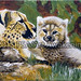 """""""Cheetahs in the Wild"""" by Melody H, acrylic, $100.00"""