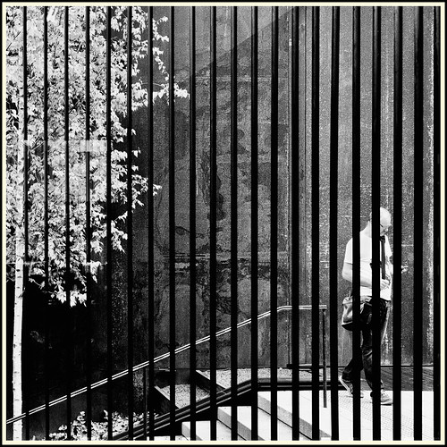 Lines & Beyond #13