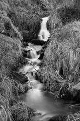The Source of Swardean Clough