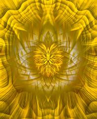 A Sun of God (FotoGrazio) Tags: 3d waynegrazio waynesgrazio waynestevengrazio abstract avantgarde beautiful closeup color colorful colors detail explosion filterforge forms fotograzio geometry impulse layers lines lovely painterly pattern photoeffect photomanipulation phototoart spiritualtwirlart surreal surrealism symmetrical symmetry texture waves yellow sun god