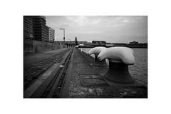 Rotterdam 2018 Rijnhaven (Hans de Meij) Tags: rotterdam rijnhaven water sky clouds bollard railtracks kopvanzuid blackandwhite monochrome