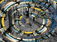 Confusion (Tobymeg) Tags: woodland colour mix altered images mono polar coordinates experiment art