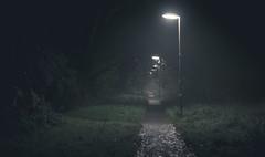 Walk in the dark (ross.colgan) Tags: dark path bookham surrey uk nex6 nex sony fog misty night grass lights streetlamps lonely eerie creepy leaves glittering lightpools darkness pitchblack pentaxm 50mm f14 smc