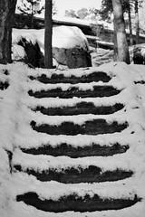 6Q3A9216 (www.ilkkajukarainen.fi) Tags: portaat steps lumi snow winter talvi seurasaari helsinki visit travel travelling happy life stuff museum outdoor suomi finland finlande eu europa scandinavia blackandwhite mustavalkoinen monochrome