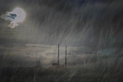 Nature Structure - Emergence (Ger208k) Tags: ireland dollymount dublin bullwall poolbeg chimneys dunes icm intentionalcameramovement multipleexposure gerardmcgrath abstract landscape