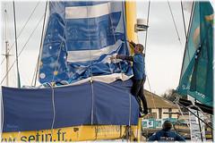 Saint-Malo - L'avant course -  Route du Rhum 2018 (Nadine.Dvx) Tags: france saintmalo routedurhum2018 course sport mer coursetransatlantique bretagne destinationguadeloupe frontdemer yacht mâts