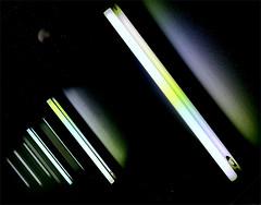 18-384 (lechecce) Tags: 2018 abstract awardtree artdigital netartii digitalarttaiwan shockofthenew art2018