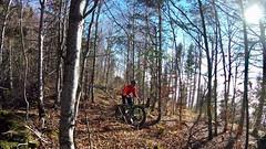 Late Fall (29in.CH) Tags: fall autumn fatbike ride 16112018