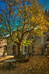 Gaststätte Sonnenburg (berndtolksdorf1) Tags: deutschland thüringen bad sulza sonnenburg gaststätte jahreszeit herbst autumn baum laub outdoor