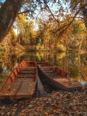 Tokaj (viktórianagynépetró1) Tags: autumn autumntime autumncolors november