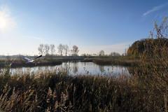 Kruibeke - Belgium (roland_tempels) Tags: supershot kruibeke water heron landscape belgium naturereserve bird trees