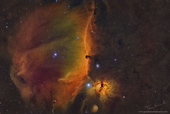 Orion-The Edge of Forever (Terry Hancock www.downunderobservatory.com) Tags: qhy qhy367c sky space astronomy astrophotography astroimaging chroma cosmos