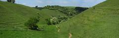 Gratton Dale singletrack (Colin Wells) Tags: sssi grattondale peakdistrictnationalpark mountainbiking longdalegrattondalesssi