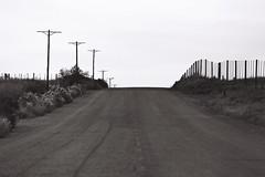 Road (Semjaja) Tags: blackandwhite blackandwhitefilm film 35mm 35mmfilm ishootfilm shootfilm shotonfilm onfilm analogue analoguecapetown asahipentaxsp1000 pentax spotmatic sp1000 supertakumar3535mm takumar 35mmlens ilford ilforddelta100 delta100 southafrica