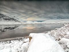 Scottish winter coat (donnnnnny) Tags: winter wonderland scotland highland snow uce frost lochabhraoin mountains lochs lakes
