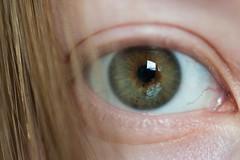 Day 340, Year 11. (evilibby) Tags: 365 36511 365days 365days11 libby eye iris pupil eyelashes hair blonde macro