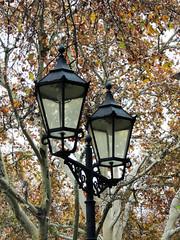 Herbst in Köln (Shahrazad26) Tags: köln keulen cologne deutschland duitsland germany allemagne herbs herfst autumn automne najaar lantaarnpaal streetlamp