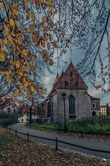 Krakow (Vagelis Pikoulas) Tags: krakow poland november autumn 2018 europe travel leaves tree architecture church tokina 1628mm landscape city cityscape urban canon 6d