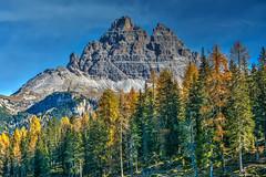 Autunno (giannipiras555) Tags: dolomiti alberi autunno montagna altoadige trentino natura panorama paesaggio landscape cielo nikon