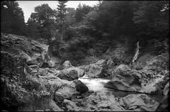 The Lone Angler (Wolfgang Wiggers) Tags: vintage japan 日本 nikko 日光市 dayariver fishing angler forest rocks 1930s