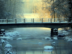 The misty and frosty morning. (irio.jyske) Tags: river creek water flowing stones forest trees bridge sun frosty misty foggy cold nature naturephotograph naturepictures naturepic naturescape naturephoto naturephotographer naturephotos naturepics natural landscapes landscapephotographer landscapepic lanscape landscape landscapephotograph landscapephotos lakescape landscapepics photographer photograph photos pic beauty beautiful