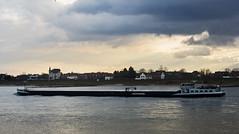 Hitdorf - Langer Rheinkahn II / Libelle (KL57Foto) Tags: 2019 germany hitdorf jahreszeitenundwetter kl57foto leverkusenhitdorf nrw natur nordrheinwestfalen omdem1 olympus winter rhein rhine fluss river schiff binnenschiff