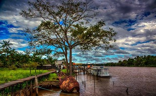 Pará  Amazonia Brasil