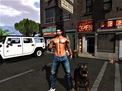 """"""" Beware of The Dog """" (maka_kagesl) Tags: secondlife sl second sky spring summer life landscape game gaming ground virtual videogame view views building buildings car auto store shop dog animal animals pet portrait photography photo picture pose tattoos tatts tree trees"""