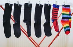 Week (CoolMcFlash) Tags: socks week flickrfriday sox hanging laundry fujifilm xt2 socken kleidung wäsche hängen kleiderständer fotografie photography clothes xf35mmf14 r