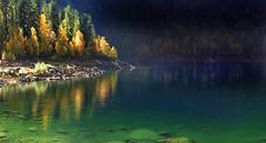 rospi smeraldini (art & mountains) Tags: alpi alps ossola valleantrona lagoalpino bosco fall riflessi green hiking esc esp condivisione natura silenzio contemplazione vision dream spirit