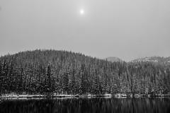 Bear Lake (pboolkah) Tags: estespark colorado unitedstates us forest water lake snow reflection sun soe canon canon5d canon5dmkiv
