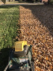 The Binford 2000 (primemover88) Tags: mtd yard man vacuum shredder mulcher leaf collection autumn fall lawn