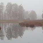 Alles #grau am 1. #Dezember in #Schweden ... thumbnail