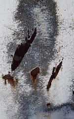 Intricate (ebergcanada) Tags: rust metal car crack paint detail oberfläche texture art abstract