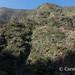 La Gomera landscape