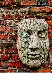 20110429 Garden of the Faces III ([Ananabanana]) Tags: nikon d40 nikkor nikon50mm118ais nikkor50mm118ais nikkor50mmf18 nikon50mmf18 50mm niftyfifty manualfocus prime photoscape nikonistas nikonista hatfieldhouse hertfordshire hatfield herts garden gardens park wall brick face sculpture mask smile smiling peaceful warm primelens gimp