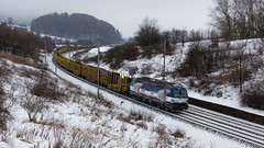 383.204 ZSSKC (Radumek) Tags: grass railway railroad rails locomotive zssk czech cd cargo vectron zsskc
