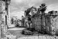 Tyros (hansekiki) Tags: libanon lebanon tyros architektur architecture sw canon 5dmarkiii