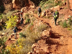 Grand Canyon Switchbacks on the North Kaibab Trail (knutsonrick) Tags:
