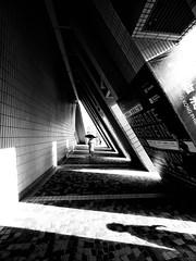 Lying In Wait (Wormsmeat) Tags: street streetphotography humour humor foreboding danger scary shadows triangles olympus mzuiko714f28pro umbrella angles attack lyinginwait hongkong