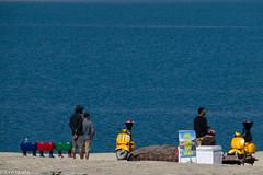 368-himalaiaIndi-PangongTso-3idiots-P1140495 (Xavi Tarafa) Tags: himalaiaindi2018 india ladakh lago lake llac pangong pangongtso