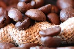 Coffee Harvest (francepar95) Tags: macro coffee coffeebean theme week challenge food morning hmm macromondaysbrew brew macromondaysandbrew